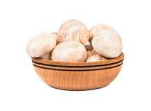 Сырцовый champignon гриба Стоковая Фотография RF