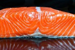 Сырцовый salmon перекрестный край на w/reflection Стоковое фото RF
