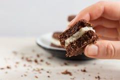 Сырцовый, vegan, печенья paleo Стоковая Фотография RF