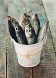Сырые рыбы (ставрида) в ведре стоковое изображение rf