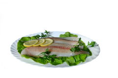Сырые рыбы Стоковые Изображения