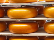 Сыры на рынке сыра на Алкмаре (Голландии, Нидерландах) Стоковое Фото