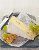 Сыр бри стоковые фото