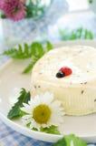 сыр домодельный Стоковые Фото