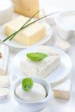 Сыр и другие молочные продучты Стоковые Фотографии RF