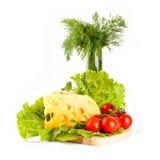 Сыр и томаты с салатом Стоковые Изображения