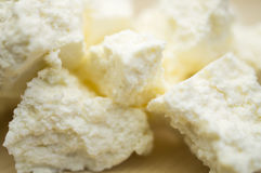 Сыр коттеджа Стоковое Фото