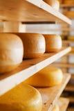Сыр-колеса зрея на полках Стоковая Фотография