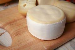 сыр круглый Стоковое фото RF