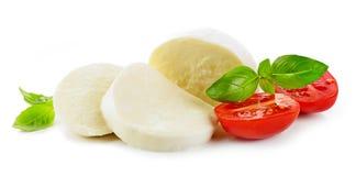 Сыр моццареллы на белой предпосылке стоковые фотографии rf