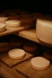 Сыр молока Стоковые Изображения