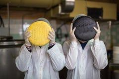 Сыр на молокозаводе, сыр с 2 работая головами Стоковые Изображения RF