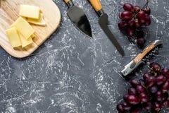 Сыр пармесан Aperitive и красная виноградина на сером каменном взгляд сверху copyspace предпосылки таблицы Стоковые Фотографии RF