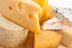 сыр печатает различное на машинке Стоковые Фотографии RF