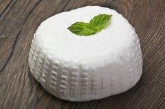 сыр свежий стоковые изображения rf