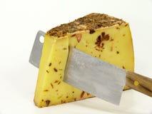 Сыр сырого молока Стоковые Изображения RF