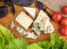 Сыр с прессформой на деревенской предпосылке Стоковая Фотография RF