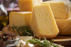 сыр трудный Стоковая Фотография RF