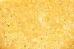 сыр трудный Стоковое фото RF