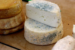 Сыр фермы естественный органический с травами Стоковые Изображения