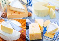 Сыр стоковые фото