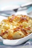 сыр cauliflower Стоковые Фото