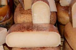 Сыр Mahon Стоковое фото RF
