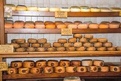 Сыр Pecorino, типичный сыр Pienza стоковое изображение