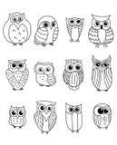 Сычи и owlets шаржа Стоковое Изображение