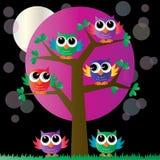 Сычи ow дерева полного красочные бесплатная иллюстрация