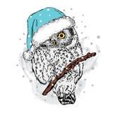 Сыч в шляпе рождества Иллюстрация вектора для карточки или плаката праздничный вектор картины Стоковое Изображение RF