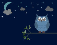 Сыч в nighttime Стоковая Фотография RF