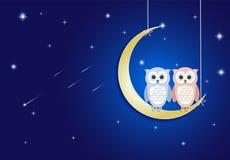 Сыч и луна на ночном небе с предпосылкой кометы и звезды иллюстрация вектора