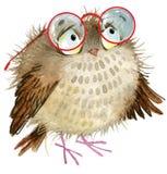 Сыч милый сыч Птица шаржа иллюстрация вектора