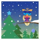 Сыч рождества Стоковые Фотографии RF