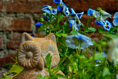 Сыч сада Стоковые Фотографии RF