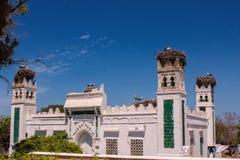 Сыч строения белых аистов большой делает ее дом на башнях, Марокко Стоковое Фото