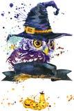 Сыч хеллоуина и шляпа ведьмы предпосылка иллюстрации акварели Стоковое фото RF