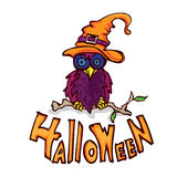 Сыч a хеллоуина Стоковая Фотография
