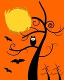 Сыч хеллоуин Стоковые Изображения