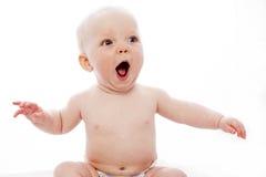 Сь младенец Стоковая Фотография RF