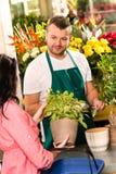 Сь мыжской florist продавая potted цветок завода Стоковая Фотография