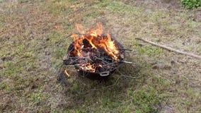 сь пожар стоковые фото