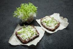 2 сэндвича от микро- зеленых цветов которые дают энергию, потерю веса и detoxification стоковые изображения rf