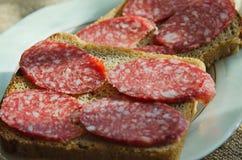 Сэндвичи черного хлеба с копчеными лож сосиски на плите стоковое фото rf