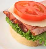 сэндвич с ветчиной сыра Стоковая Фотография