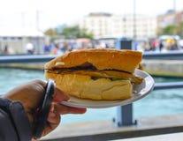 Сэндвич с зажаренными рыбами и овощами стоковое изображение