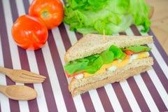 Сэндвич тунца на циновке стоковое изображение rf