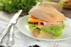 сэндвич с ветчиной сыра близкий вверх Стоковые Изображения RF
