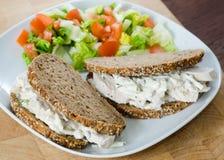 Сэндвич с курицей 2 на блюде с зеленым салатом Стоковое Изображение RF